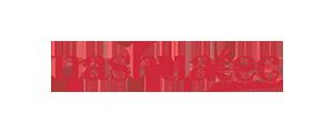 nashuatec-logo